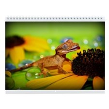 Funny Lizards Wall Calendar
