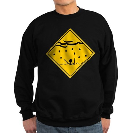 Flood Warning Sweatshirt (dark)