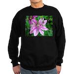 American Robin Fledgling Sweatshirt (dark)