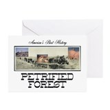 ABH Petrified Forest Greeting Cards (Pk of 20)
