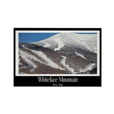 Winter On Whiteface Rectangle Magnet (10 pack)