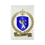 MICHEL Family Crest Rectangle Magnet