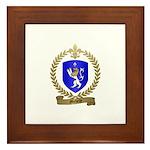 MICHELLE Family Crest Framed Tile