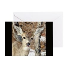 Deer Howdy Blank Greeting Card