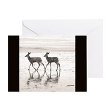 Fawns on Shore Blank Greeting Card