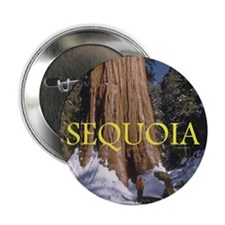 "ABH Sequioa 2.25"" Button (10 pack)"