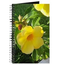 Yellow Mandevilla Journal