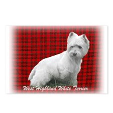Westie Tartan Postcards (Package of 8)