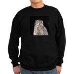 Great Horned Owl Sweatshirt (dark)