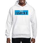 iBhangra Hooded Sweatshirt