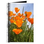 Orange California Poppies Journal