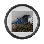 Baby Steller's Jays Large Wall Clock
