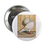 "Khaki Mookee Pigeon 2.25"" Button (10 pack)"