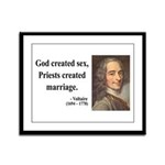 Voltaire 16 Framed Panel Print