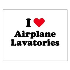 I love airplane lavatories Small Poster