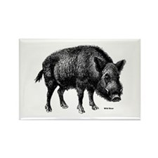 Wild Boar Rectangle Magnet (10 pack)
