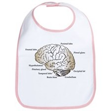 Brain Section Bib