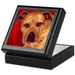 Pitbull Keepsake Box