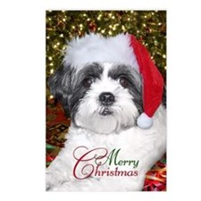 Christmas Shih Tzu Postcards (Package of 8)