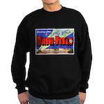 Drew Field Tampa Florida Sweatshirt (dark)