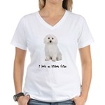 I Love My Bichon Frise Women's V-Neck T-Shirt