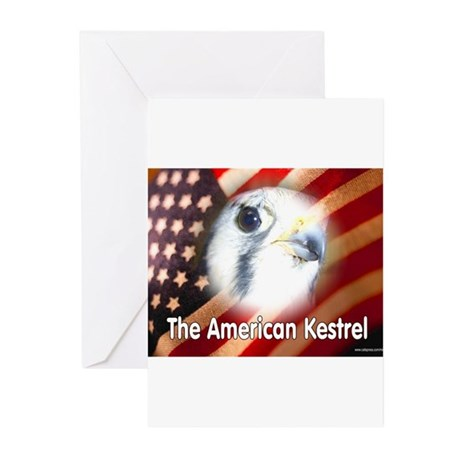 American Kestrel Greeting Cards (Pk of 10)