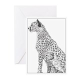 Cheetahs Greeting Cards (Pk of 10)