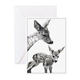 Deer Greeting Cards (Pk of 20)