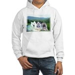 Sue's Kids Hooded Sweatshirt