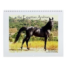 Black Arabian Stallion Wall Calendar
