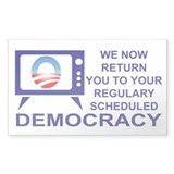 Democracy TV Rectangle Decal