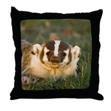 Badger Throw Pillow