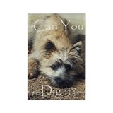 Cairn Terrier Dig It! Rectangle Magnet (10 pack)