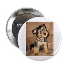 "Silky Puppy 2.25"" Button"