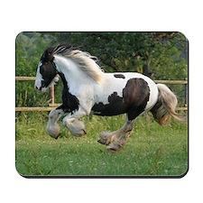 Gypsy Horse Mousepad