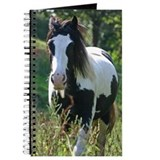 Gypsy Horse Journal