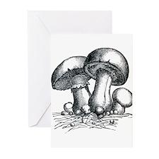 Mushrooms Greeting Cards (Pk of 10)