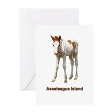 Assateague Island Foal Greeting Card