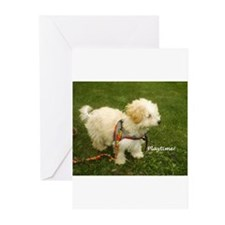 Playtime! Greeting Cards (Pk of 10)