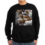 The Foxed Sweatshirt (dark)