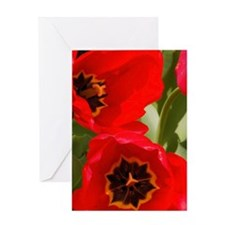 INDIVIDUAL GREETING CARD: RED TULIPS