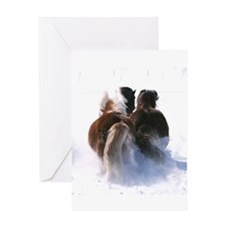 Cute Icelandic pony Greeting Card