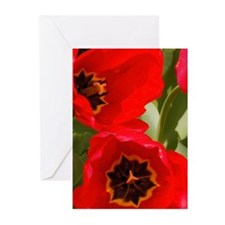RED TULIPS: GREETING CARDS IN PKGS OF 10