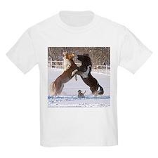 CRW_9720 T-Shirt