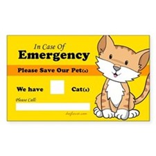Rescue My Cats Rectangle Decal