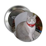 "Lucy Kitteh 2.25"" Button"
