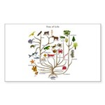 Tree of Life Rectangle Sticker 10 pk)