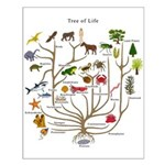 Tree of Life Small Poster