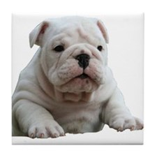Bulldog 1 Tile Coaster
