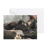 Sun Bear Belly Greeting Cards (Pk of 10)